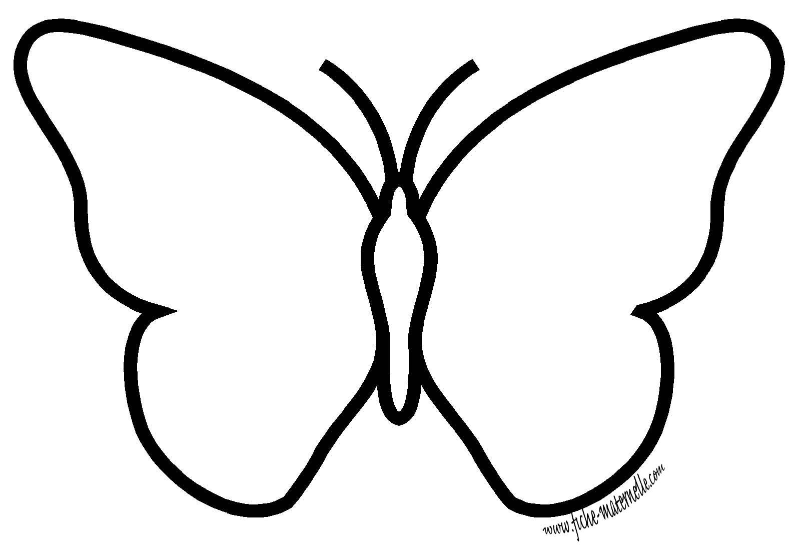 Aile De Papillon Dessin la symétrie en maternelle : le papillon aux ailes d'encres | ecole
