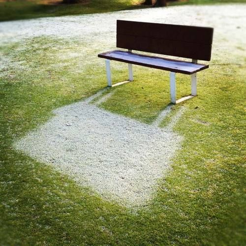 malformalady:    Frost shadows are when the rising sun melts the frost on the ground except for where the frost was covered by a shadow. And then the frost takes on the shape of the shadow. It's like having a shadow in negative.  Photo credit: Chad Coleman