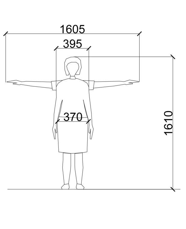 Average Male And Female Dimensions  Heights  References -9129