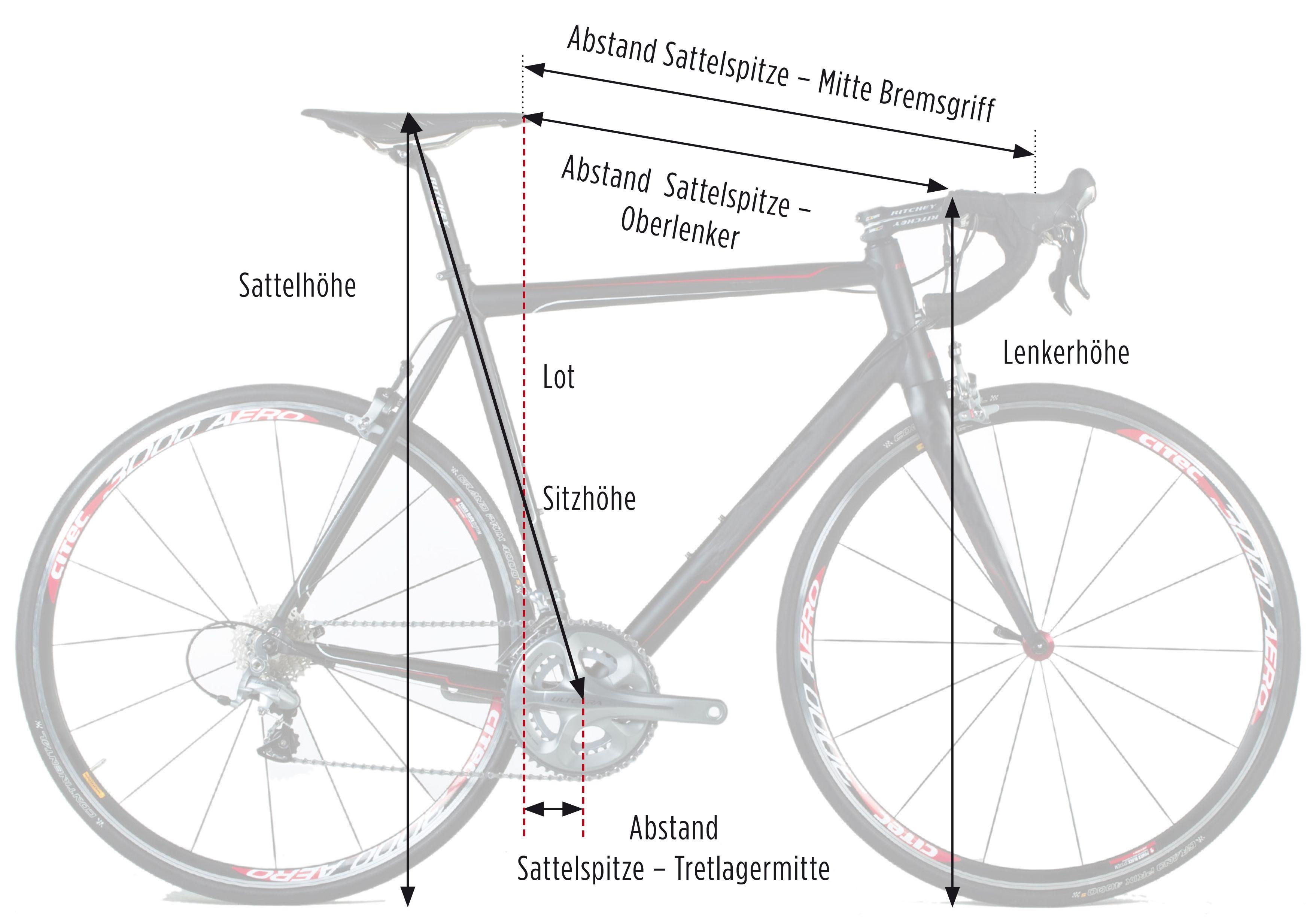 Vermessungsblatt für Sitzposition und Rahmen | Bike - Tech ...
