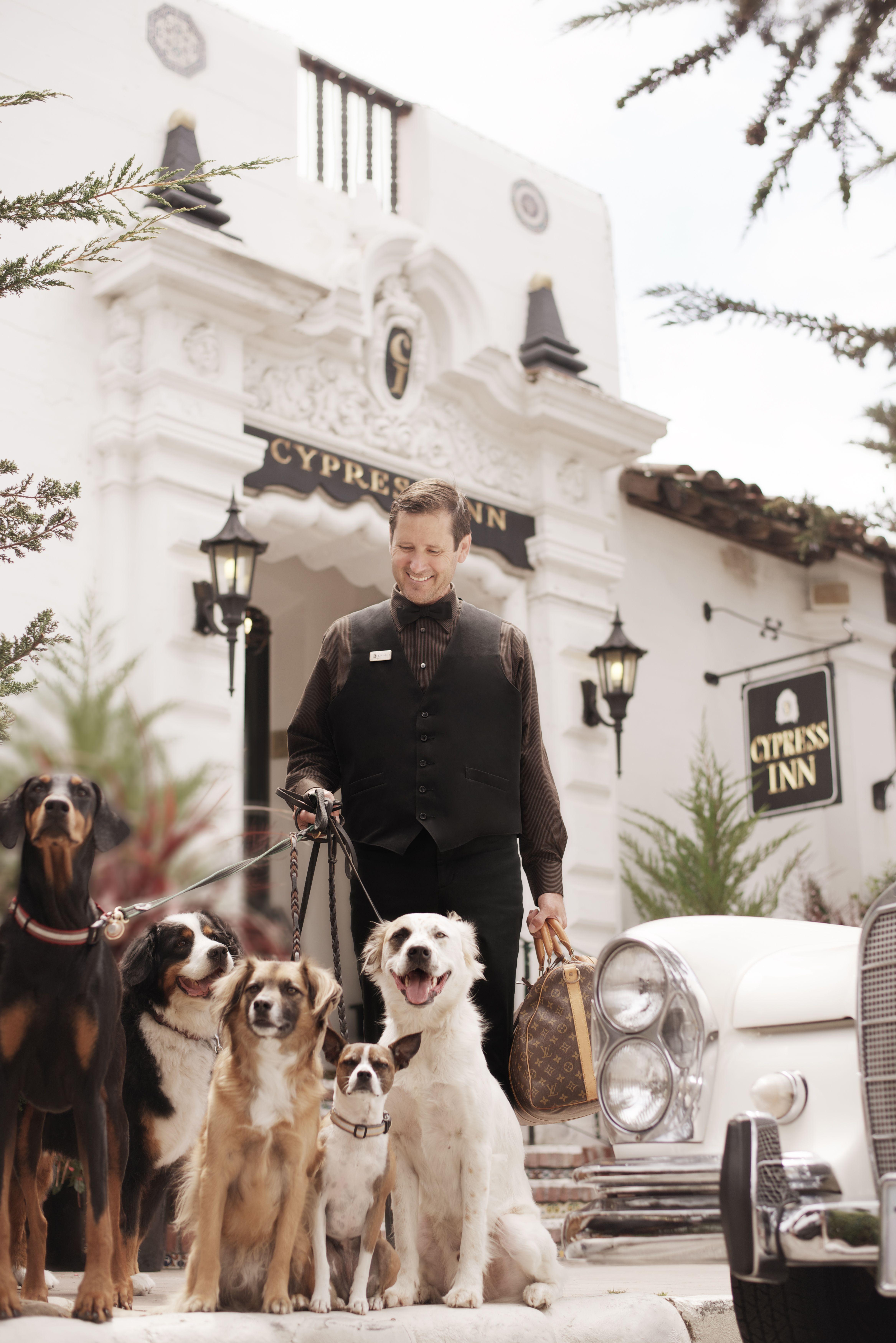 Carmel By The Sea Ca Dog Friendly Hotels Dog Friendly Vacation Pet Friendly Hotels