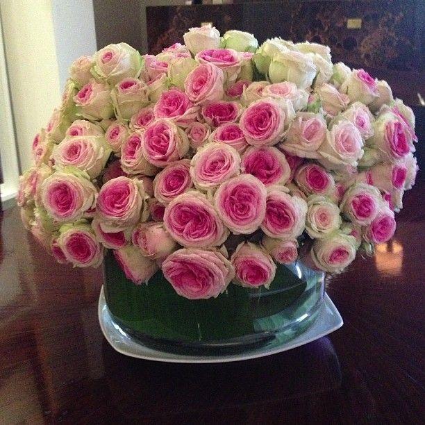 mini eden roses blooms pinterest centerpiece. Black Bedroom Furniture Sets. Home Design Ideas