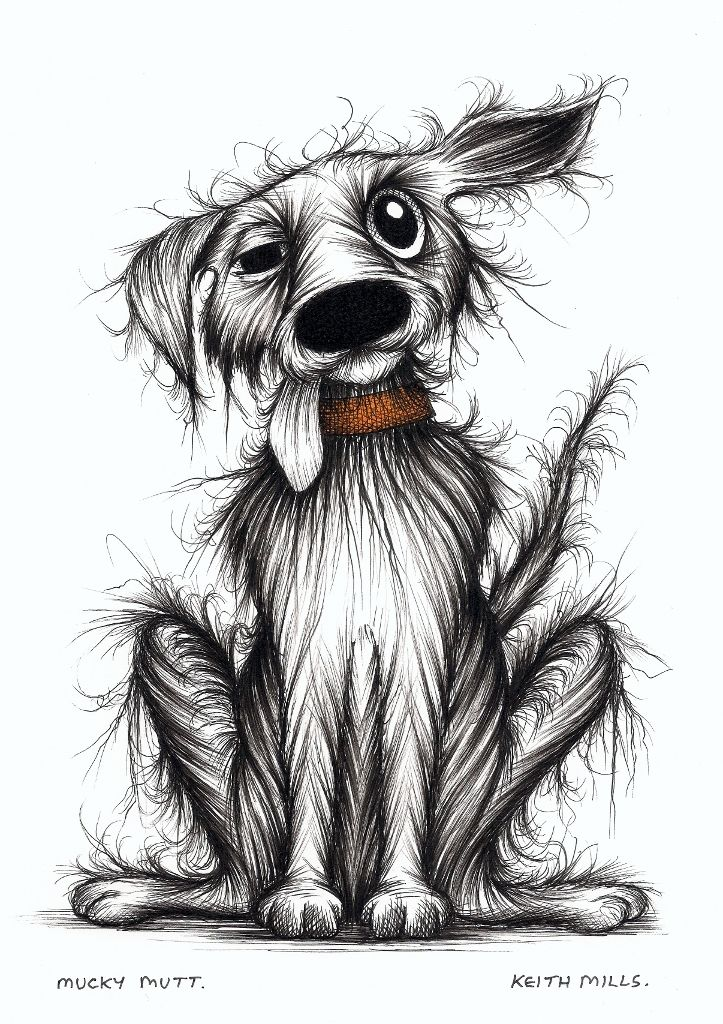Mucky mutt by Keith Mills.