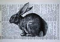 Rabbit Print - Vintage French Dictionary Print - 5 x 7 Bunny