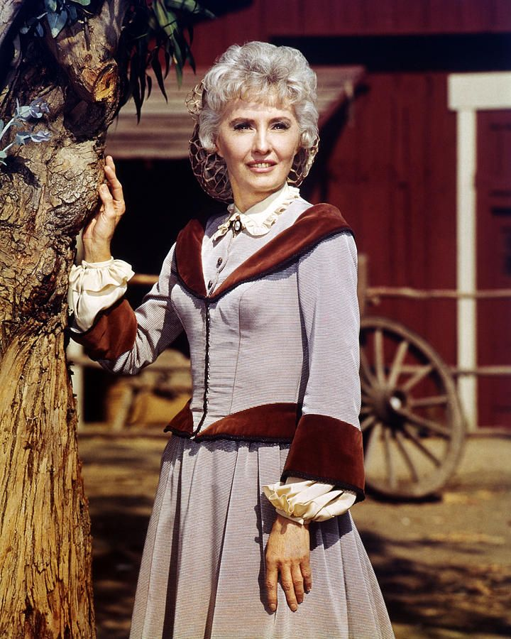 Barbara Stanwyck in The Big Valley by Silver Screen | Barbara stanwyck,  Actresses, Silver screen