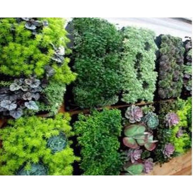 12 Pocket Outdoor Vertical Living Wall Planter (With