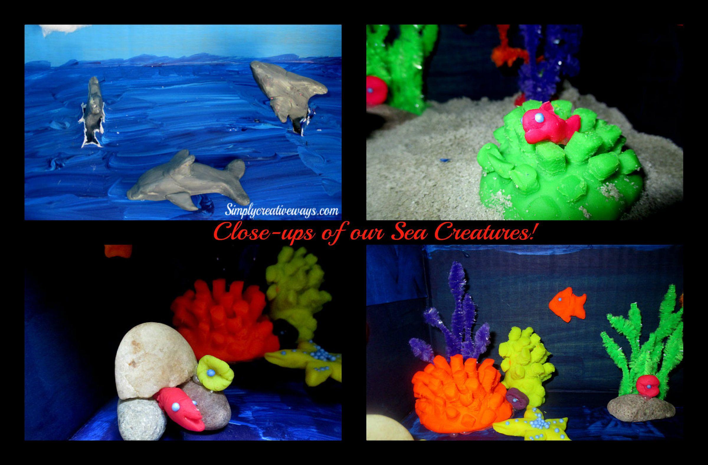 Dolphin Diorama Collage 2