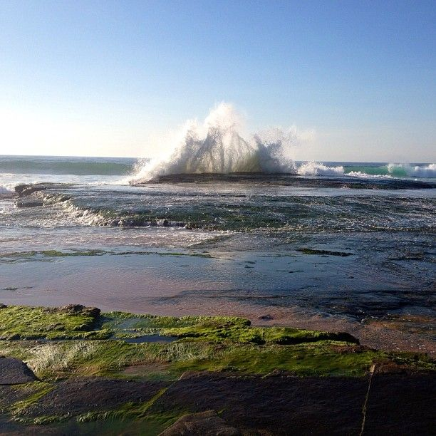 #beach #sand #surf #sunny #bodyboarding #swell #waves #turrimetta #Padgram