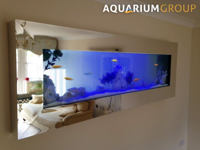 A through wall fish tank installed with a contemporary box for Wall mounted fish tank