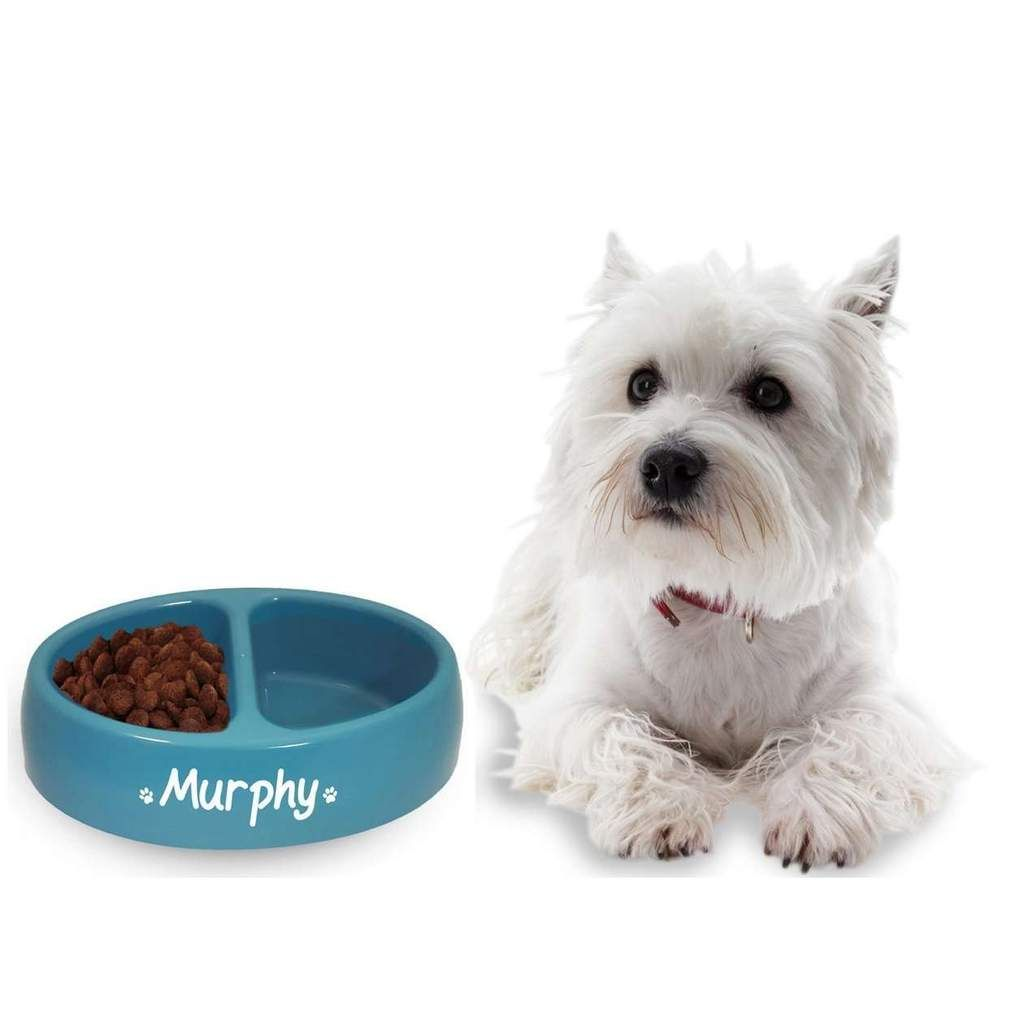 This Set Of Dog Bowls Are Perfect For Both Dogs Food And Drink