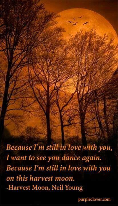 Harvest Moon Song Lyric Vintage Quote Print