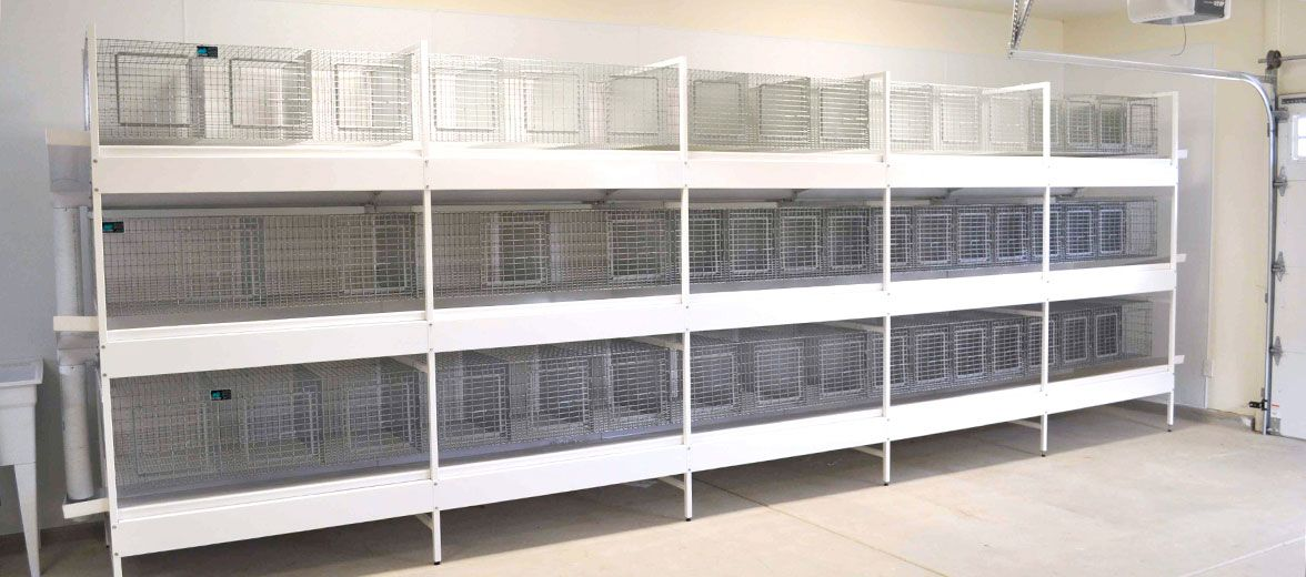 Ultimate Rabbit Cage System Kw Cages Rabbit Cages