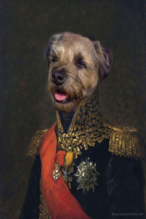 Pin On Heroic Dogs