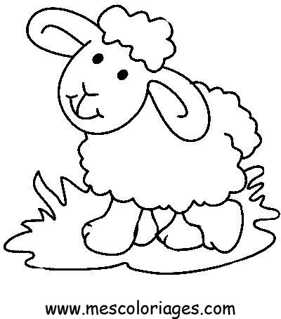 sheep coloring pages - Sheep Coloring Page