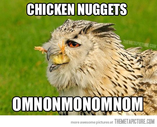Chicken Jokes Dirty: I Will Never Eat Another Chicken Nugget Without Thinking