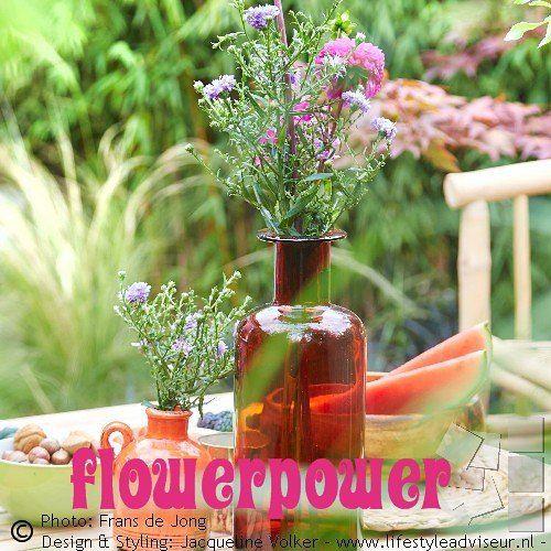 Wat een paar simpele bloemen kunnen doen …. Een warm kleurpalet om helemaal blij van te worden! Flowerpower! -------------------------------------- Foto uit de serie: Voortuin in een bohemian hippie chic stijl. Bekijk het complete fotoalbum, link in profiel. -------------------------- Small front yard in hippie chic, bohemian garden style. Photo gallery: link in bio. ---------------------------- #buiteninterieur #gardendesign#lifestyleadviseur #gardenstyling #voortuin#boho #bohochic…