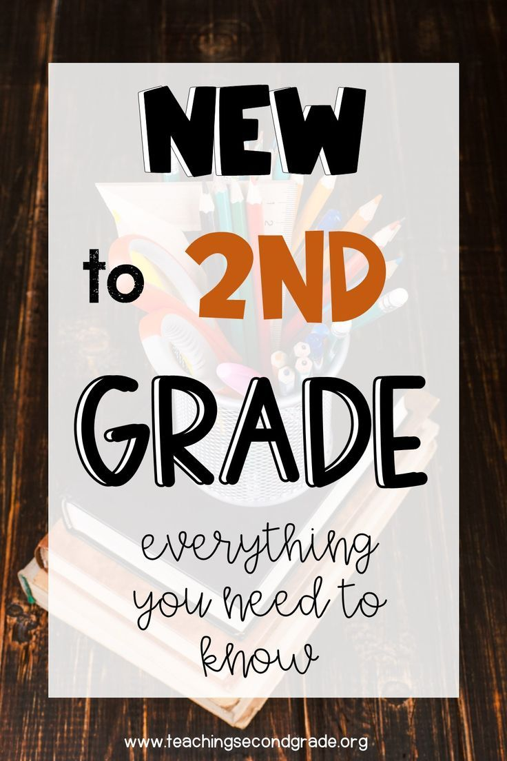 Are You New to Second Grade? Everything You Need to Know