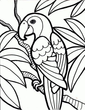 imagenes de animales aereos para colorear | Imagenes de la ...