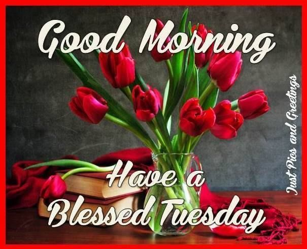 Good Morning, Have A Blessed Tuesday | Tuesday greetings