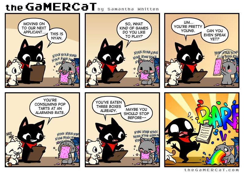 Best Cat Comics Ideas On Pinterest Halloween Adventure Make - 18 hilarious comics that are all too true for cat owners