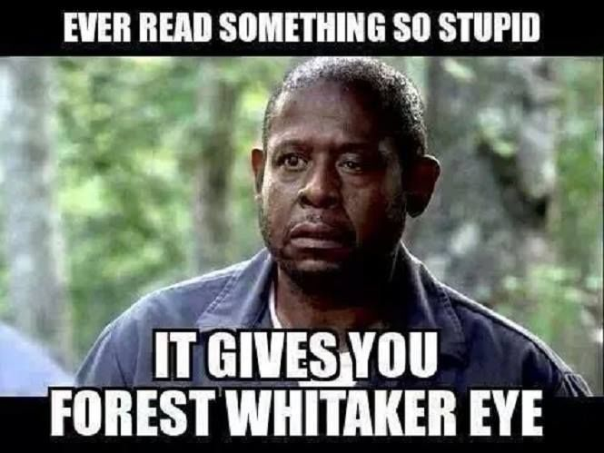 Ever Read Something So Stupid It Gives You Forest Whitaker Eye Forest Whitaker Funny Memes Humor