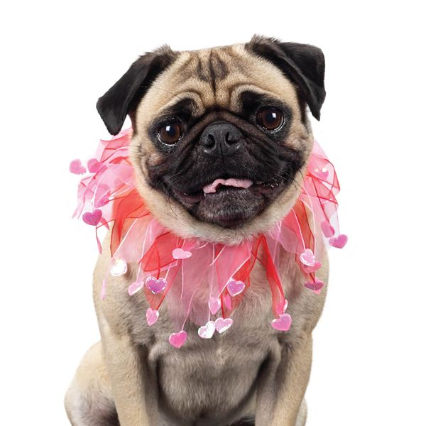 Valentine Dog Scrunchies By Aria Pugs And Kisses Valentines Day Dog