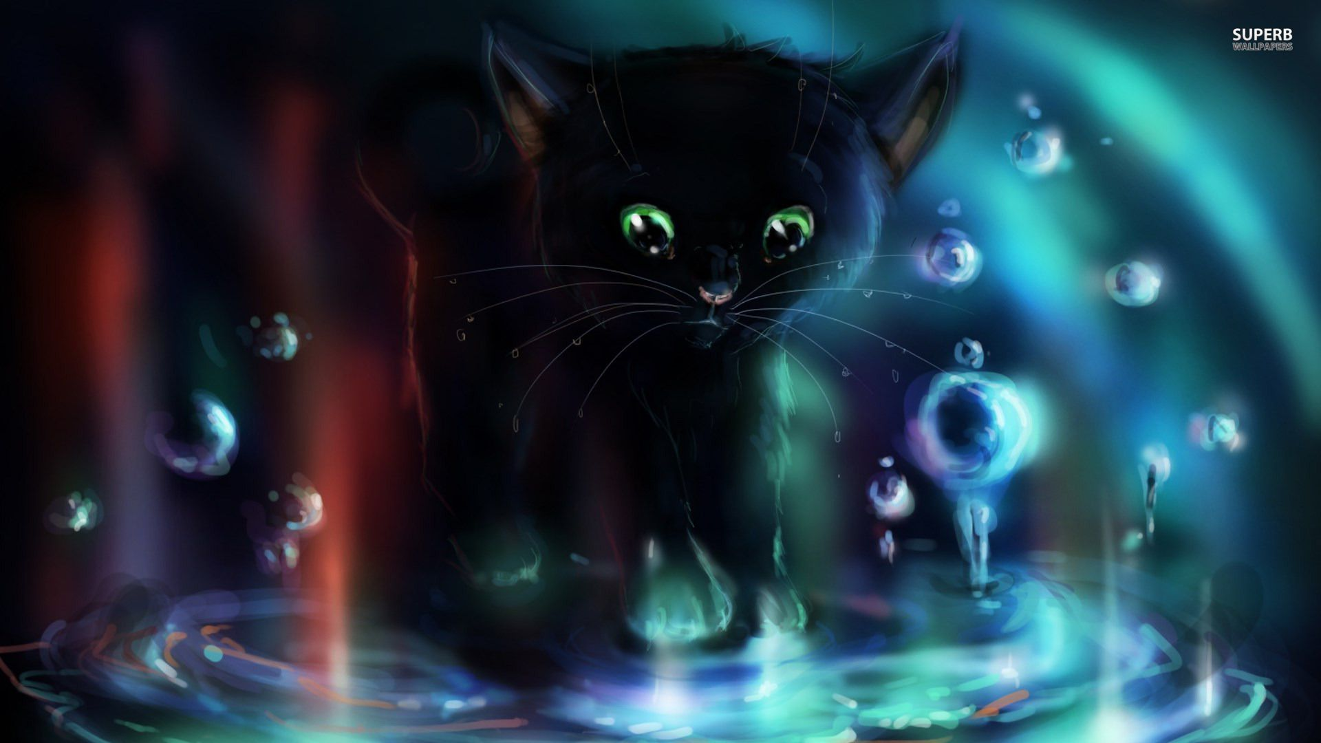 Black Kitten Anime Cat wallpaper, Cute kitten gif