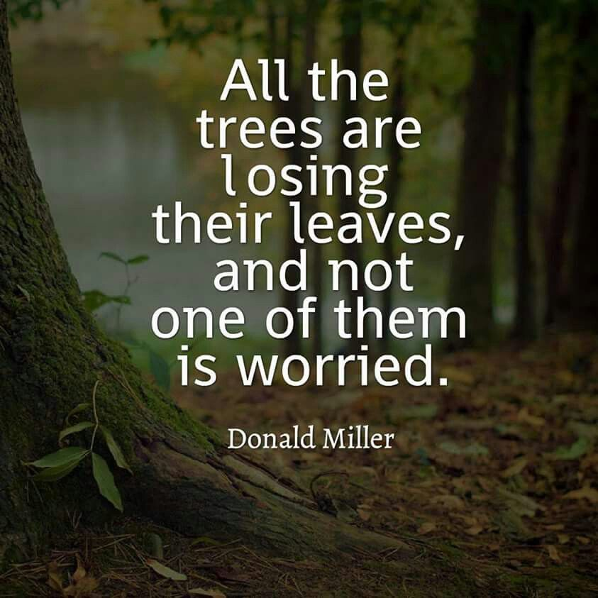 Quotes About Nature: Quotes For A Better Life