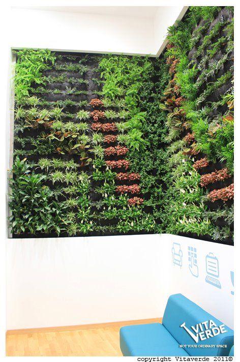 relaxation #verticalgarden