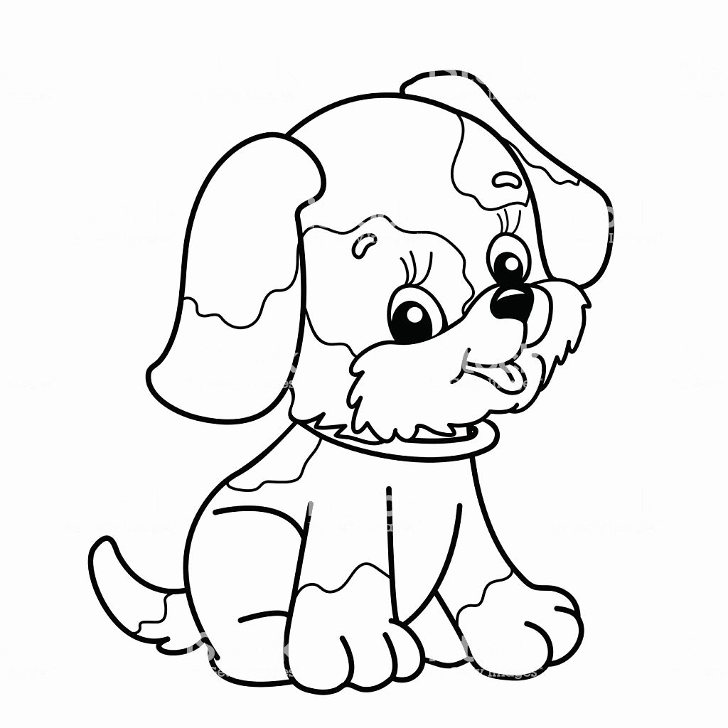 Animal Outlines for Coloring Beautiful Coloring Page ...
