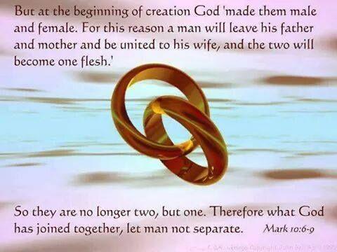 Kuvahaun tulos haulle Mark 10:6