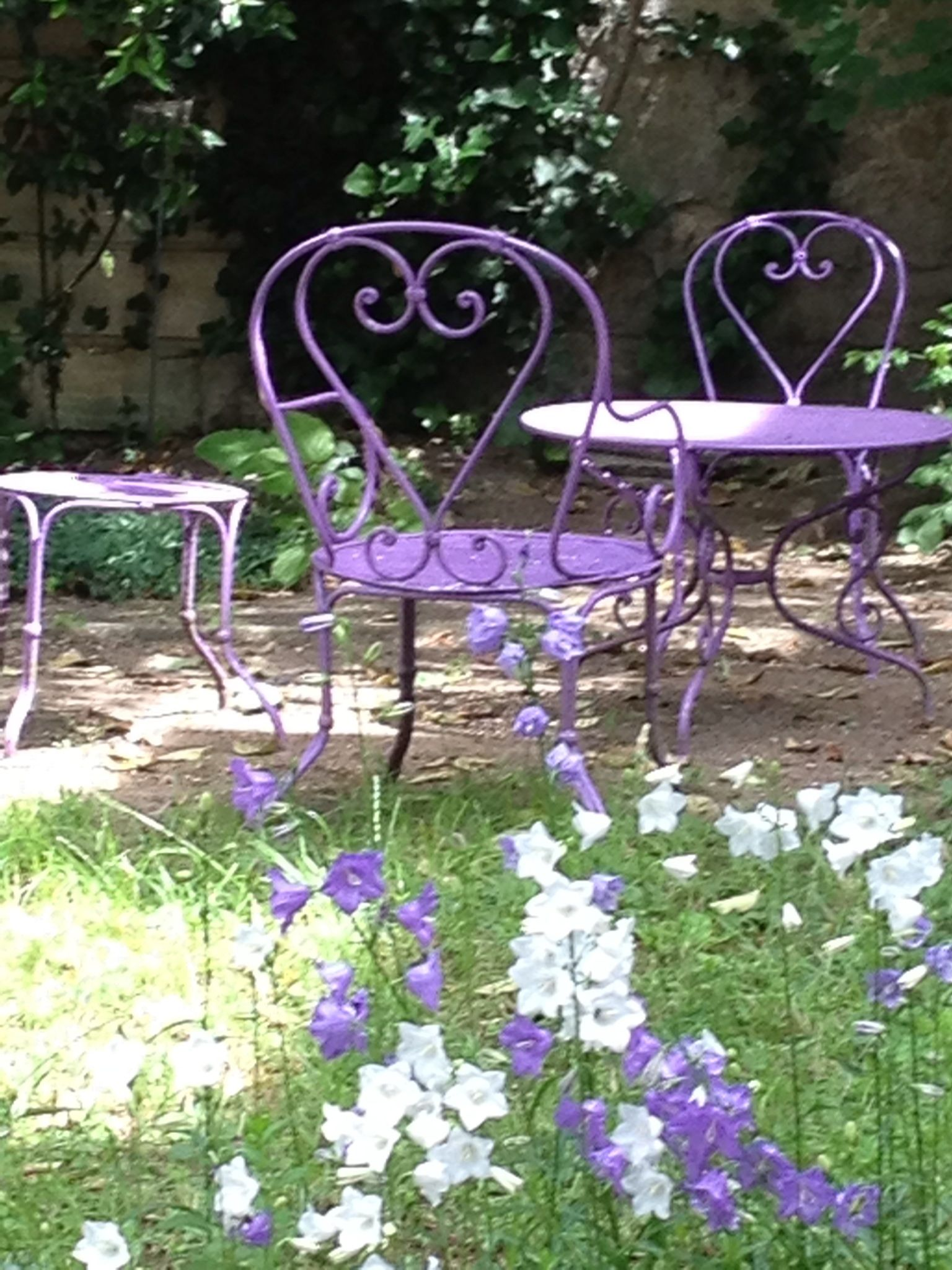 Pin de Melpo Siouti en Purple Garden | Pinterest