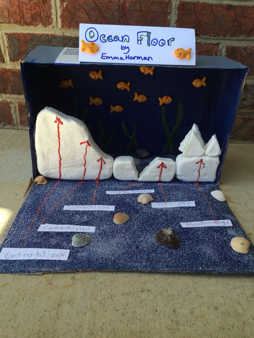 Fifth Grade Ocean Floor Project