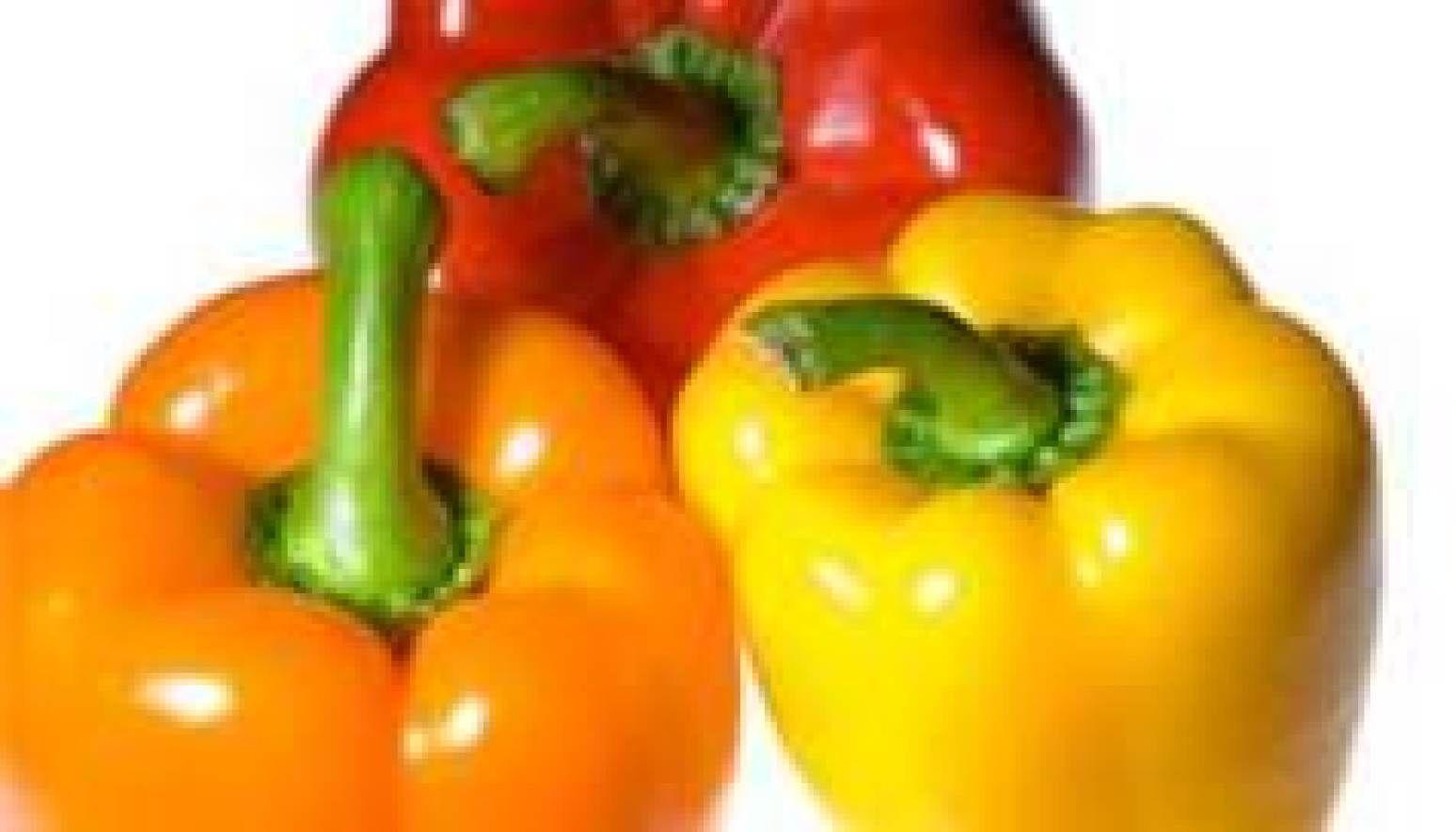 Vegetarian Cheesy Stuffed Peppers Recipe Stuffed Peppers Stuffed Bell Peppers Bell Pepper Nutrition