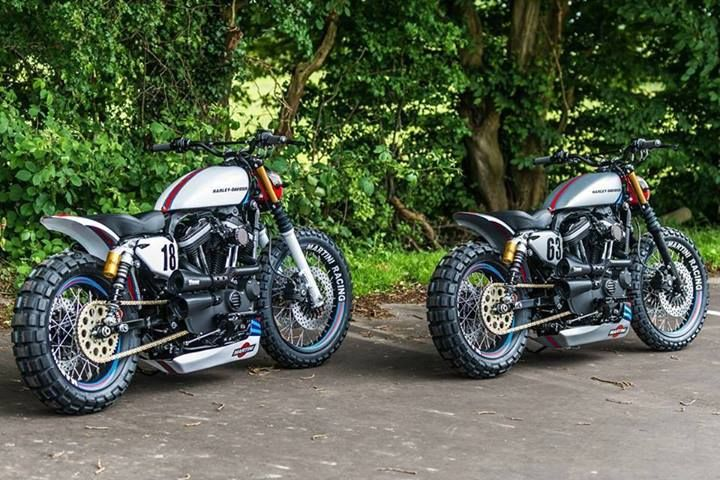 a pair of Harley Sportster street trackers