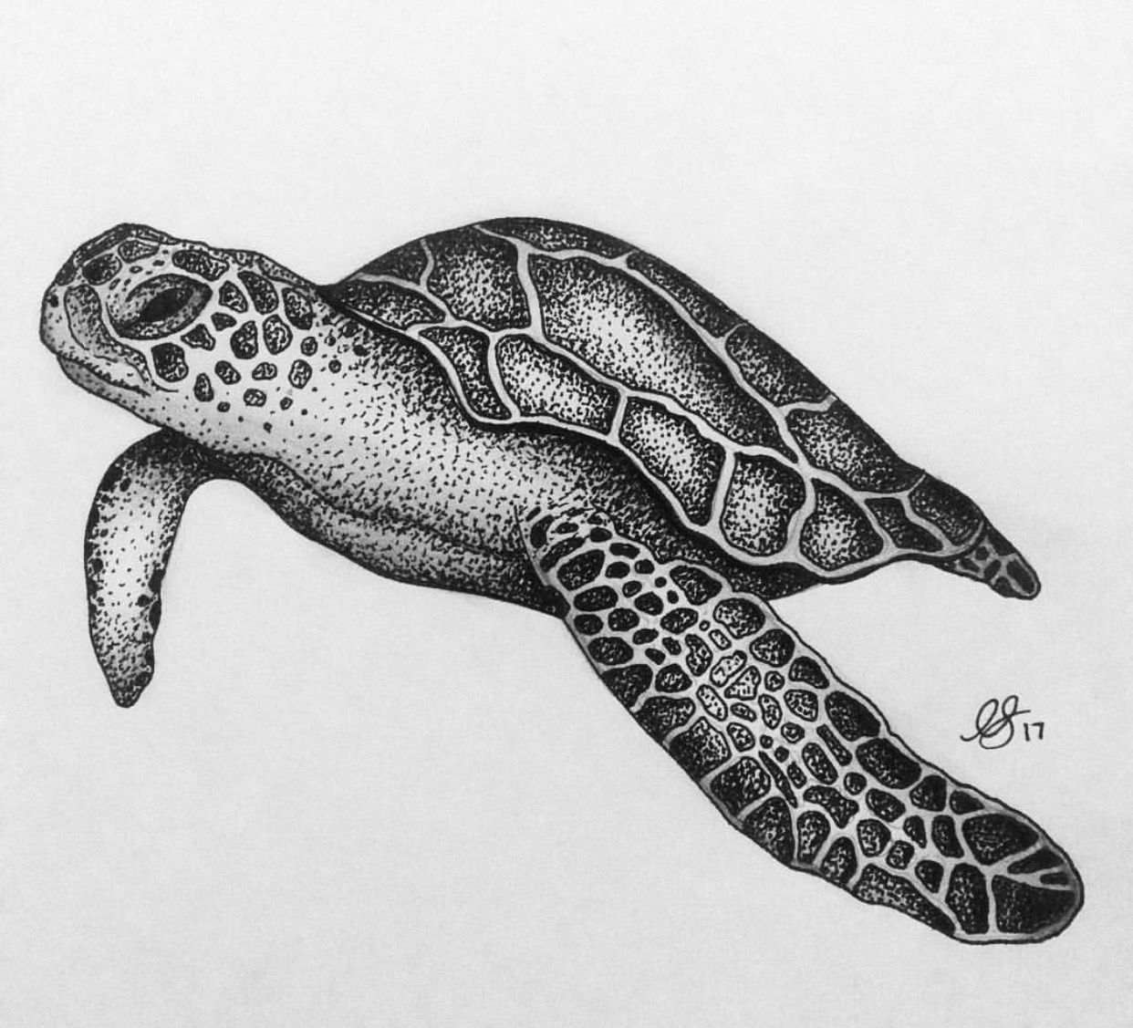 87ccff2c5 Sea turtle tattoo sketch | Maori tattoos | Sea tattoo, Turtle, Sea ...