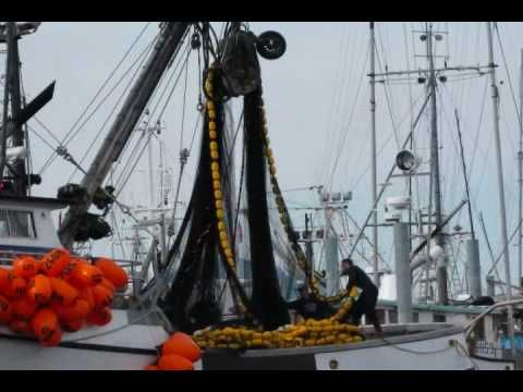 Purse seining for herring in Sitka  F/V Pillar Bay