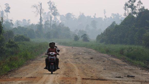 Erneuerbare Treibstoffe: Eine neue Quote für den Agrosprit | ZEIT ONLINE http://www.zeit.de/mobilitaet/2013-07/biosprit-foerderpolitik-europa-quote