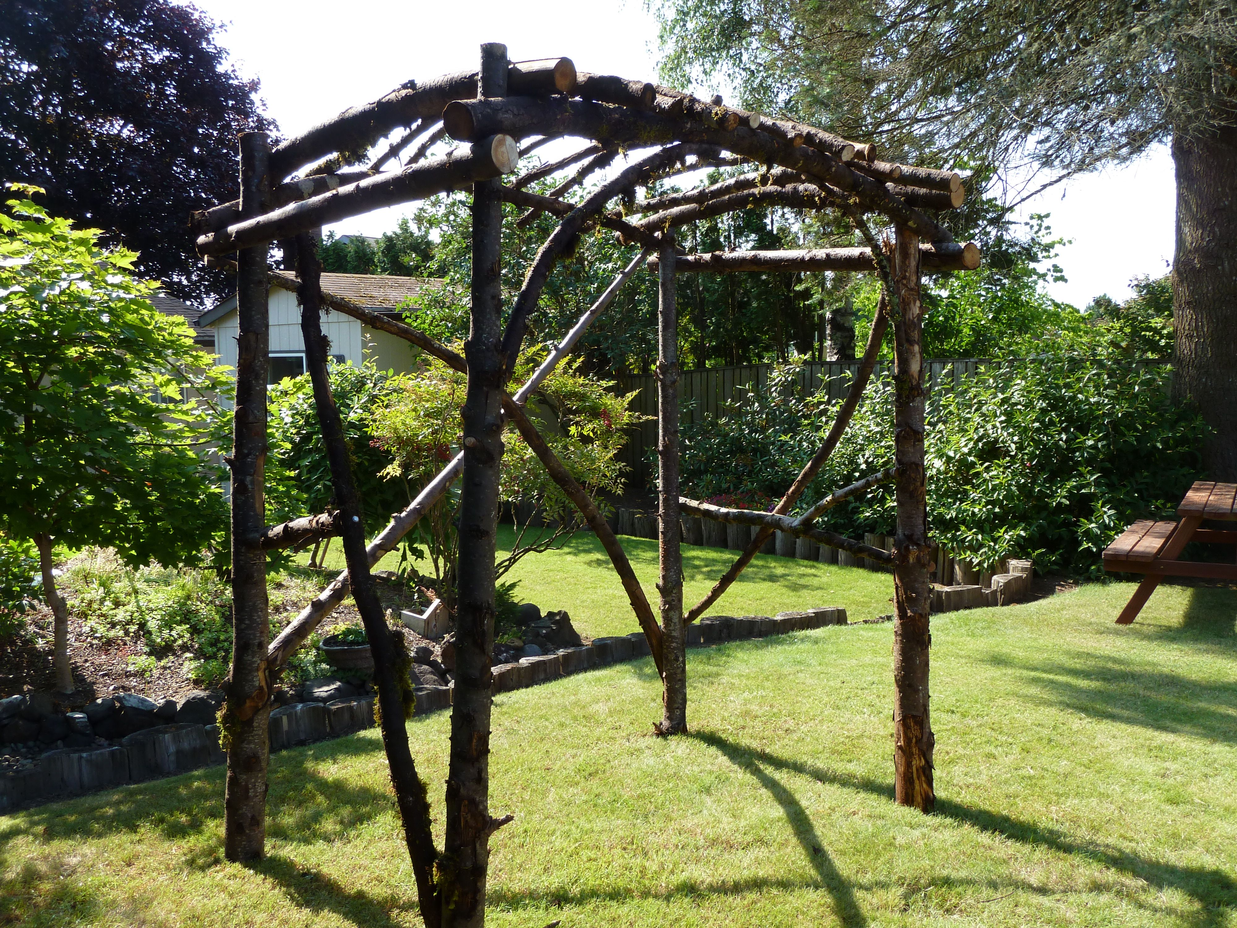 tree branch wedding arbor, son & daughter-in-law were married under ...