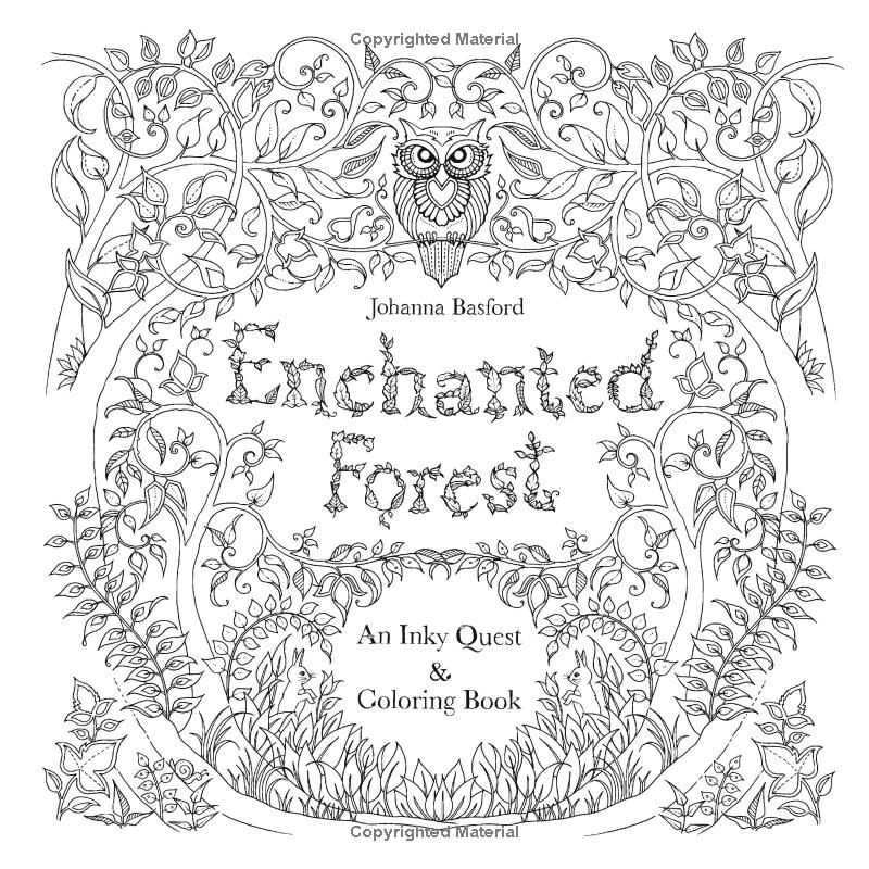 Enchanted Forest An Inky Quest And Colouring Book Amazoncouk