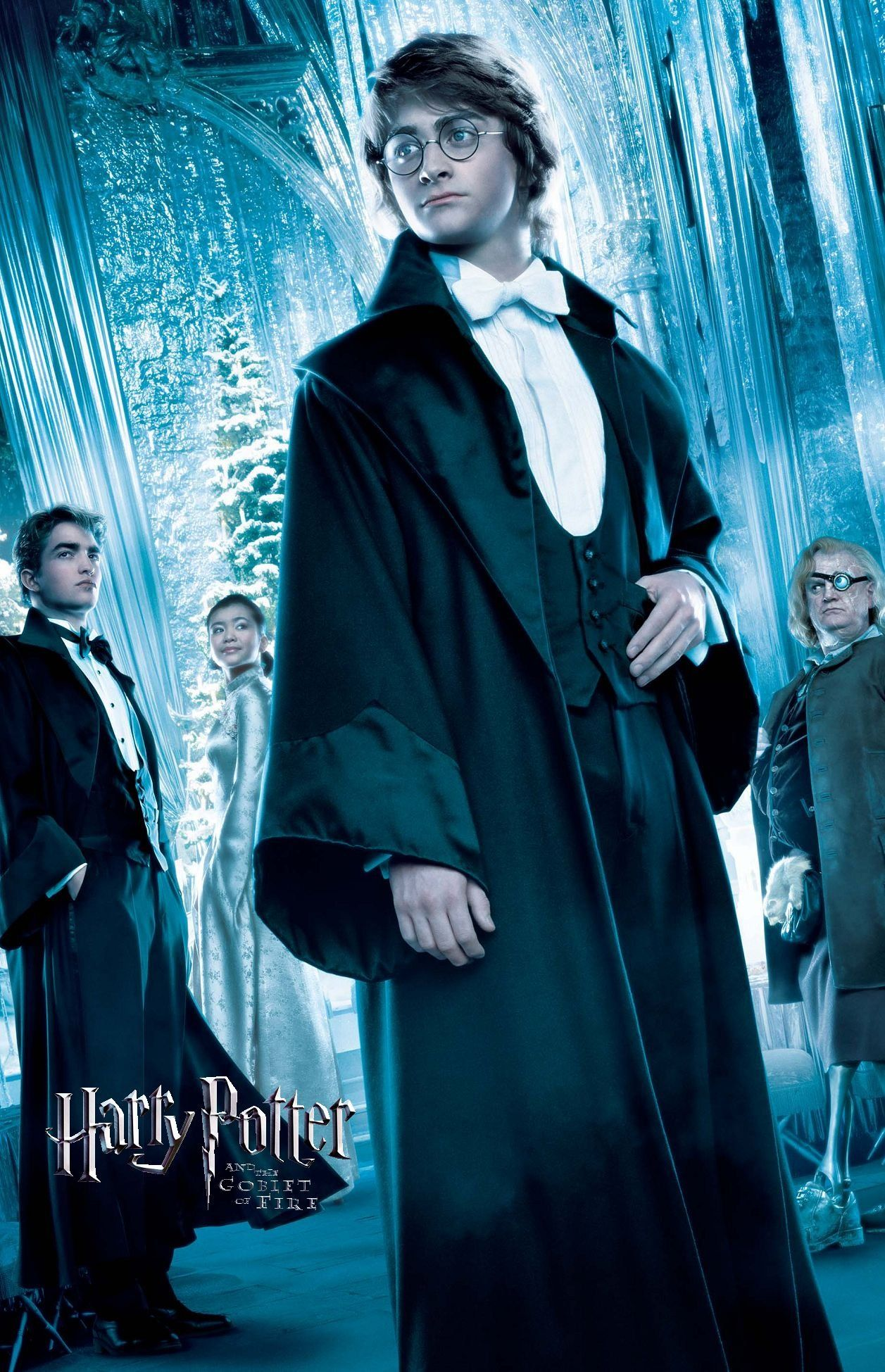 Harry Potter And The Goblet Of Fire Film Harry Potter Goblet Harry Potter Pictures Harry Potter Poster