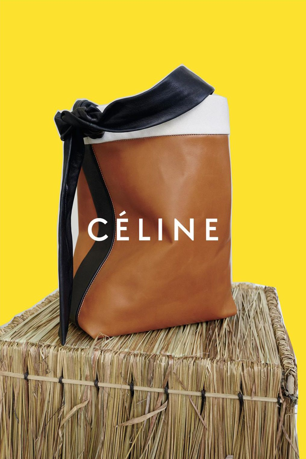82bfb0266814c First Look  Céline Autumn Winter 2016 Campaign