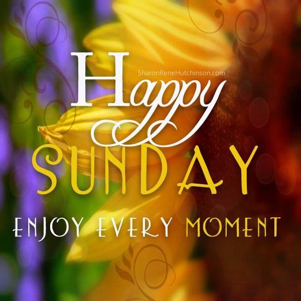 Happy Sunday, enjoy every moment | Happy sunday quotes, Happy sunday  morning, Sunday quotes funny