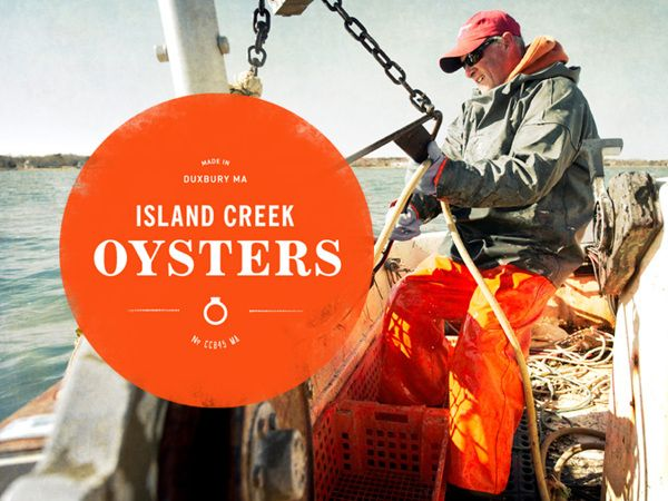 Island Creek Oysters on Branding Served
