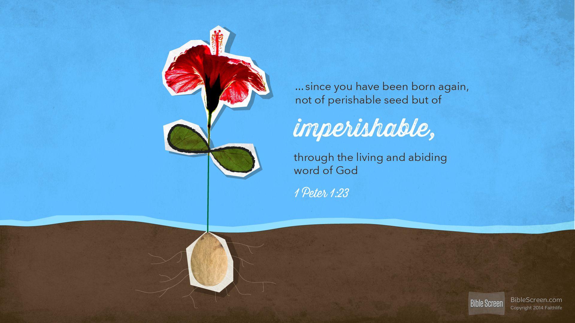 I'm reading 1 Peter 1:23