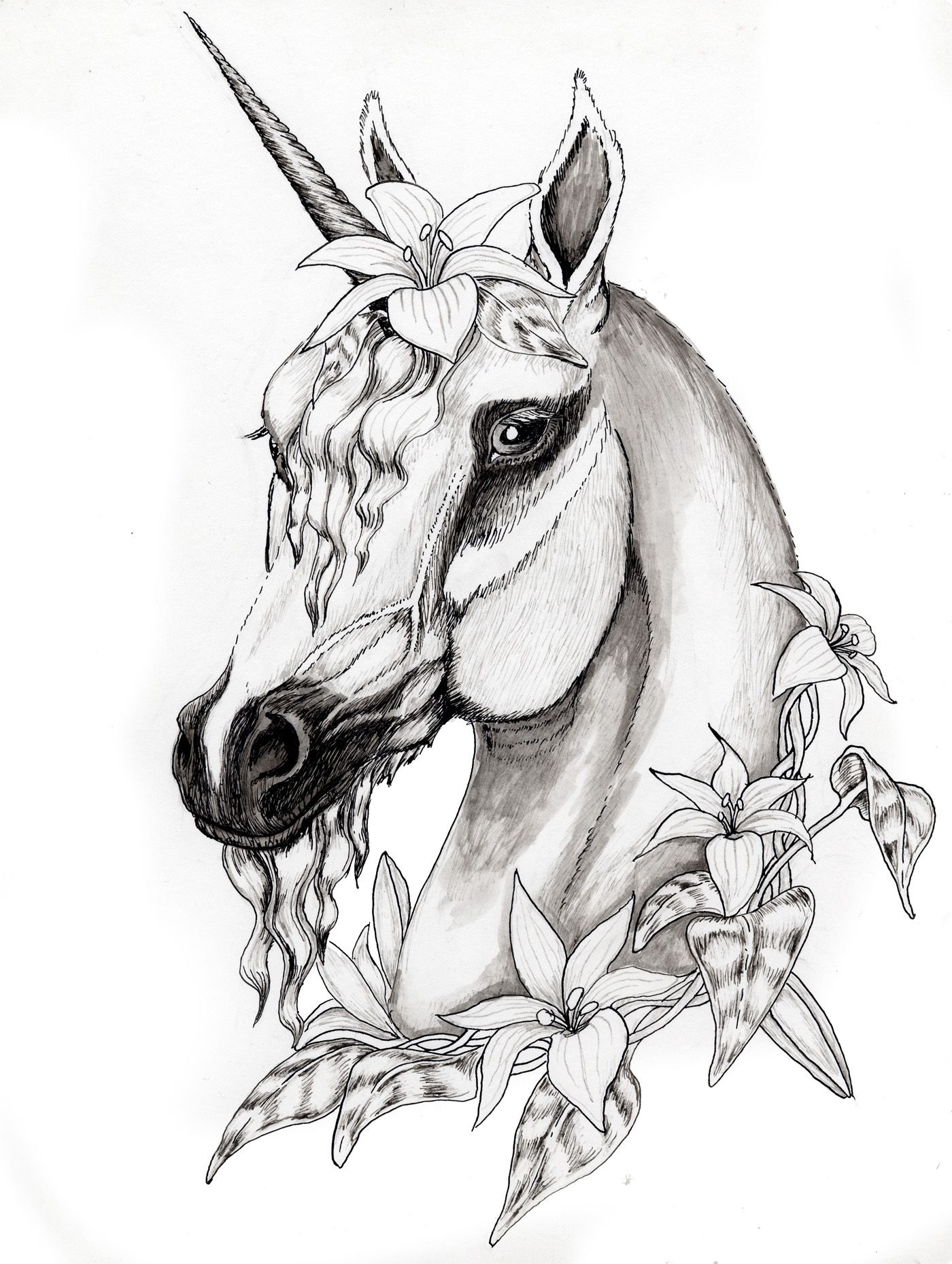 Unicorn coloring pages realistic - Pegasus Drawing Google Search Unicorn Coloring Pageshorse