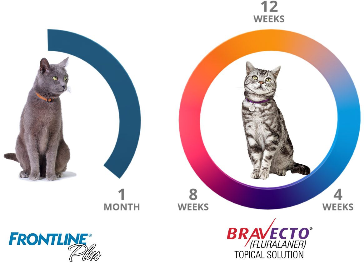 Diagram of BRAVECTO® VS THE COMPETITION
