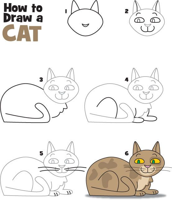 How To Draw A Cat | Kid Scoop