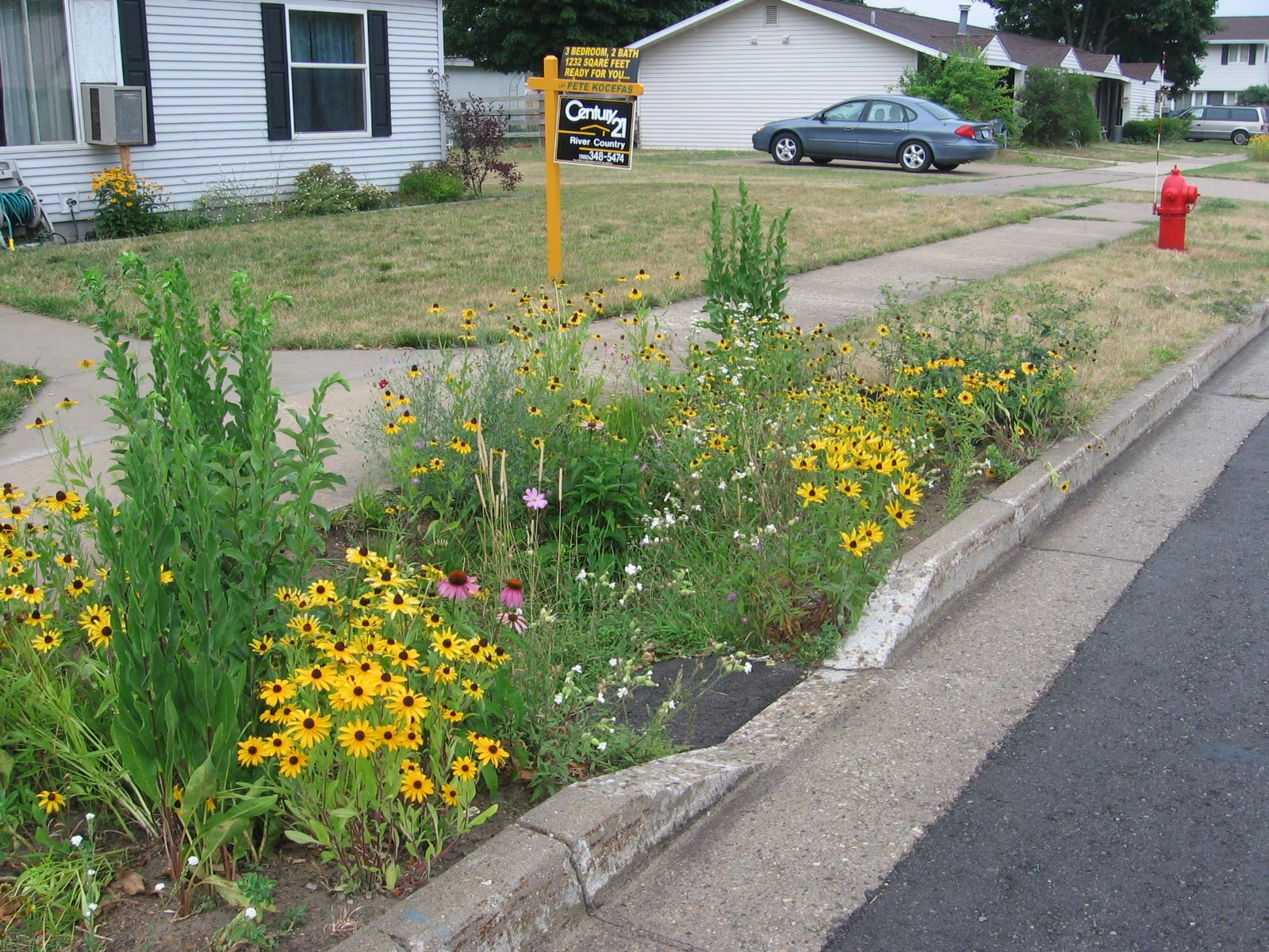 Stormwater Management Design : Curb cut to small bioretention stormwater pinterest