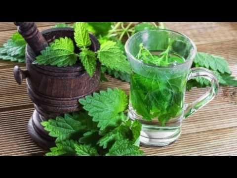 ortiga hojas de próstata o radicinina